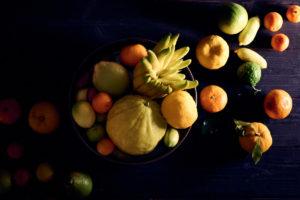 Les agrumes Bachès